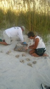 AMITW volunteers John Schimkaitis and Mary Lechleidner excavate a sea turtle nest near Sea Grape Lane in Anna Maria Sept. 4.