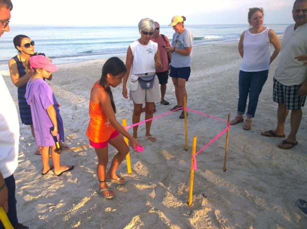 Kenzie Lowe, 10, visiting from Missouri, ties ribbon around stakes marking a sea turtle nest with AMITW volunteer Claudia Wiseman July 2 at Manatee Public Beach.