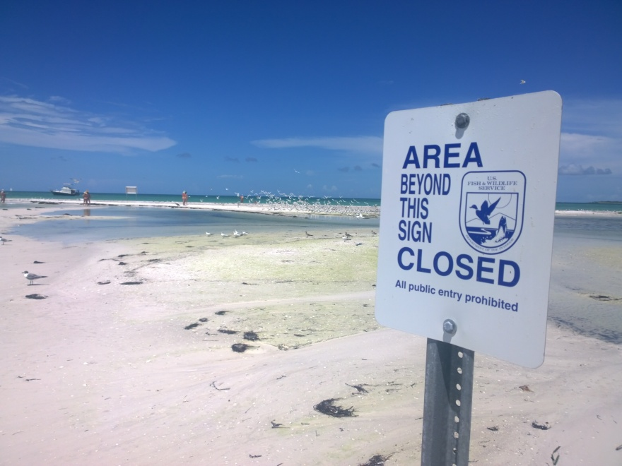 Signs posted by the U.S. Fish and Wildlife Service direct the visitors to Passage Key – a wildlife refuge – to remain outside the high tide line to protect nesting and feeding birds.