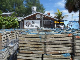 Crab traps are stacked between the Star Fish Co. and A. P. Bell Fish Co. before the start of stone crab season.