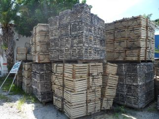 Crab traps are stacked on pallets.