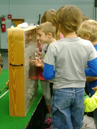 Anna Maria Elementary School second-graders look at a sea turtle nest diorama.